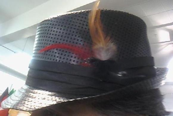 Black Straw with Feathers Fedora Unisex One Size Hat