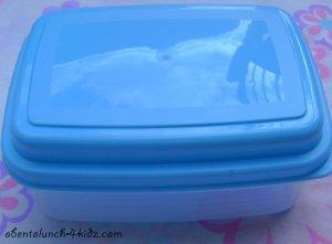 Basic Bento Box w/ Cool Pack