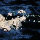 $9.99Bridal Wedding Veil Prom Pageant blue Pearl&white Satin roses Head Piece tiara,Crown Headband