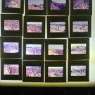 Vintage Amateur Vacation Sorthwest 35mm Color Slide Lot 16 Slides