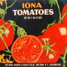 Iona Tomatoes Can label Atlantic & Pacific Tea Co. NY