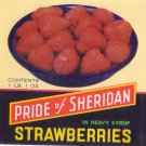 Pride of Sheridan Strawberries Can Label Sheridan NY