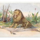 Victorian Trade Card Huntington Pianos Lion and the Mouse Julius & March York PA