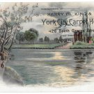 Victorian Trade Card City Carpet House Harry M King York PA Lake Scene