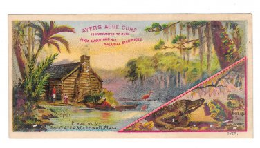 Victorian Trade Card Ayers Ague Cure Fever Malarial Disorders Swamp Alligator Log Cabin Frogs