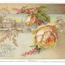 Antique Victorian Reward of Merit Card Pale Pink Rose Gold Leaves Vtg Gibson 4X6