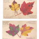 2 Victorian Trade Cards Ponds Extract Patent Medicine Advertising Autumn Leaves