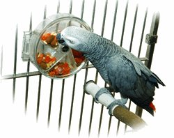 Wheel of Foraging bird toy parts parrots acrylic treats