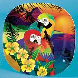 1 Macaw Parrot Plate bird household parties dinner