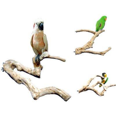 JAVA WOOD PERCH Xlarge bird toy parts cage parrots
