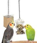 Foraging Box Feeder bird toy parts parrots tiels