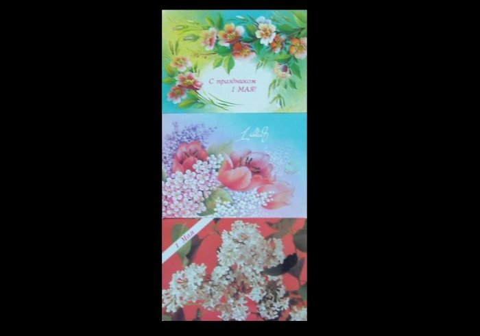 COLLECTION OF THREE SOVIET UNION MAY DAY FLORAL POSTCARDS