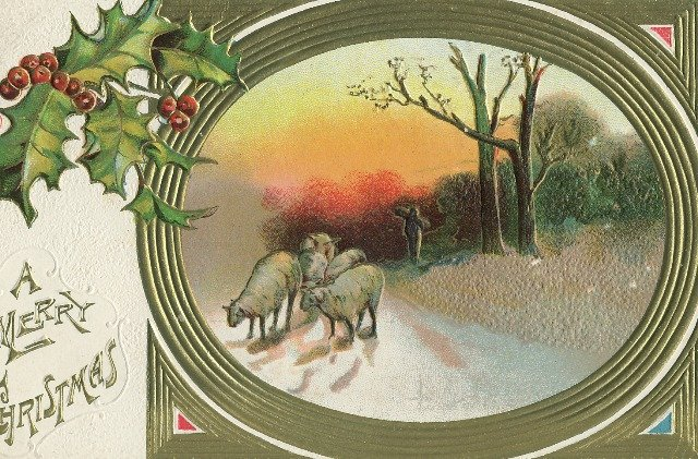 1909 Vintage Christmas Postcard Embossed Holly and gold frame Sheep returning home at sunset