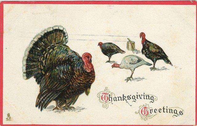 c 1912 Tuck Thanksgiving Postcard Embossed Turkeys