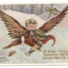 Vintage Thanksgiving Postcard Turkey Thief AS 1907 Lounsbury