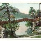 Lake Mohonk NY Rustic Bridge Vintage postcard Photostint