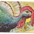 An American Beauty Vintage Thanksgiving Postcard turkey 1909
