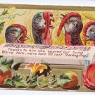 Turkeys Singing Song of Thanksgiving Vintage Postcard Turkeys 1910