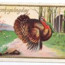 Vintage Thanksgiving Postcard Embossed Turkey Conwell