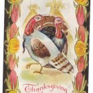 Nash  Vintage Thanksgiving Postcard Brown and White Turkeys Corn Pumpkin Frame