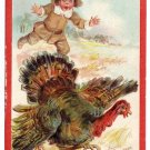 Brundage Boy Chasing Turkey Vintage Thanksgiving Postcard