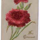 Velvet Add On Christmas Carnation Flower 1907 Vintage Christmas Postcard