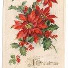 John Winsch 1913 Poinsettias Vintage Christmas Postcard