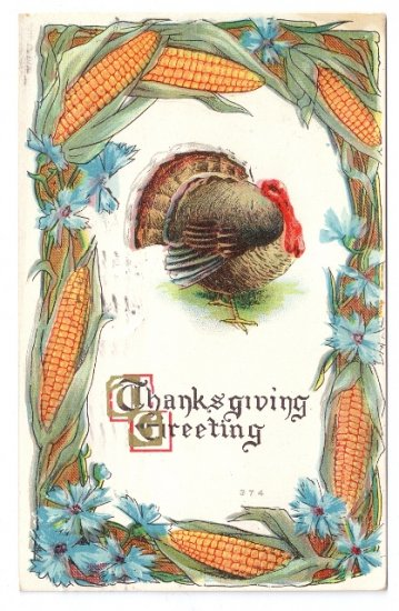 Turkey Framed with Corn Flowers Embossed Vintage Thanksgiving Postcard 1912