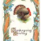 Turkey Framed with Corn Flowers Embossed Vintage Thanksgiving Postcard 1912