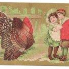 Children Turkey Gilded Vintage Thanksgiving Postcard 1909