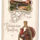 Turkey Wishbone Embossed Vintage Thanksgiving Postcard Meeker 1910