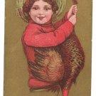 Gold Moire Background Child w Turkey Vintage Thanksgiving Postcard 1912