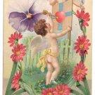 Cupid Cherub Pansy UND Vintage Valentine Postcard