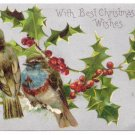 Birds Holly Silver Vintage Christmas Postcard