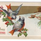 Birds Embossed Vintage Christmas Postcard