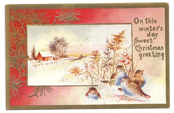 Birds Snowy Farm Scene Lightly Embossed Gold Trim Vintage Christmas Postcard