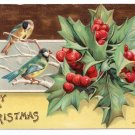 Birds Holly Embossed Vintage Christmas Postcard P. Sander