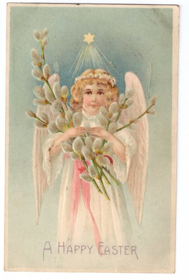Angel Pussy Willows Embossed Antique Easter Postcard 1908