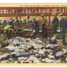 Deep Sea Net Haul Million Dollar Pier Atlantic City NJ Curteich 1940 Linen