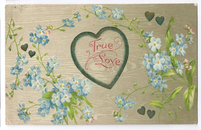 True Love Embossed Forget me nots Hearts 1908 Vintage Postcard
