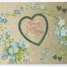 True Love Embossed Forget me nots Hearts 1908 Vintage Postcard