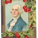George Washington's Birthday Cherries Vintage Patriotic Postcard