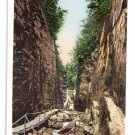 The Flume Franconia Notch White Mountain NH Photostint ca 1910