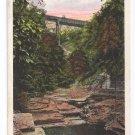 Watkins Glen NY Jacob's Ladder Tichnor Vintage Postcard