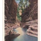 Watkins Glen NY Elfin Gorge Tichnor Vintage Postcard
