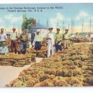 Sponge Exchange Tarpon Springs FL Vintage Linen Postcard Curteich 1940