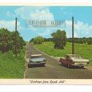 Lake Wales FL Spook Hill 1968 Postcard