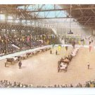 Canadian National Exhibition Toronto Judging Cattle 1915