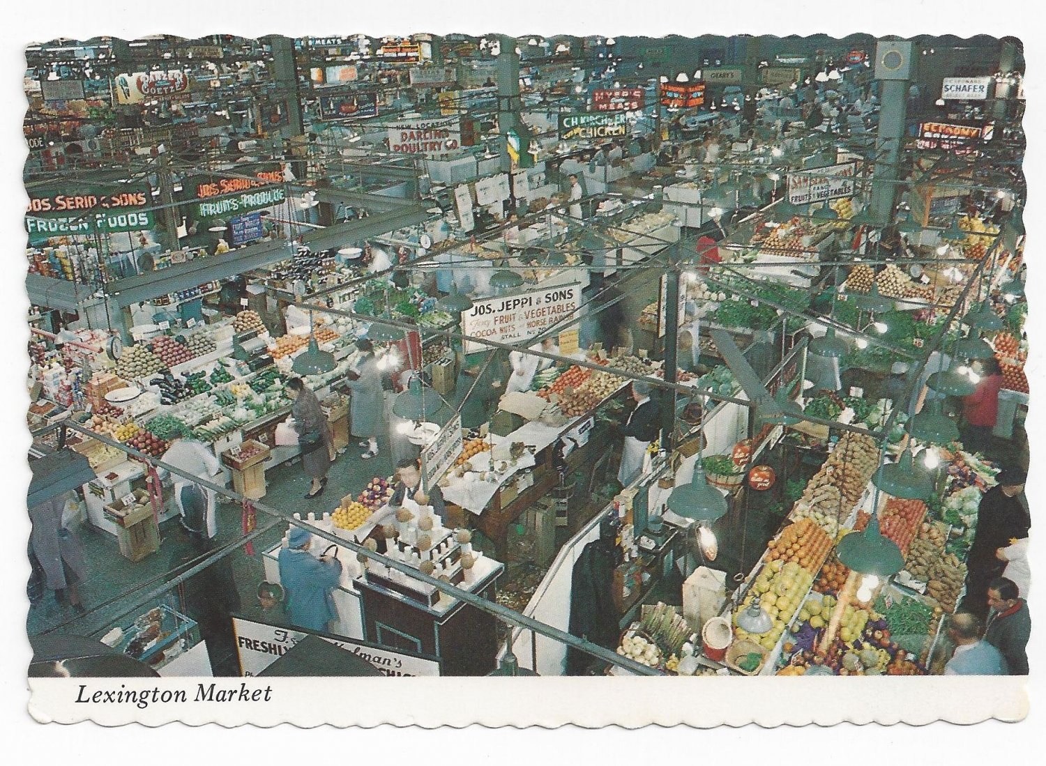 Baltimore MD Lexington Market 1970s Traub Postcard 4X6
