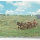 Intercourse PA Amish Farmer Using Horse Drawn Modern Baler Vintage Postcard